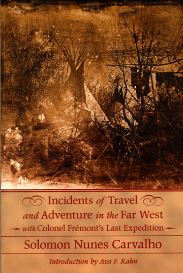 Incidents of Travel book